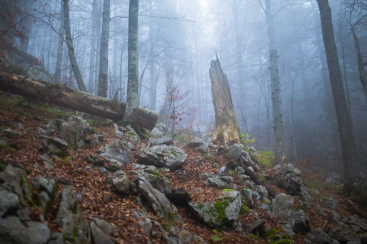 Bijele_stijene-28