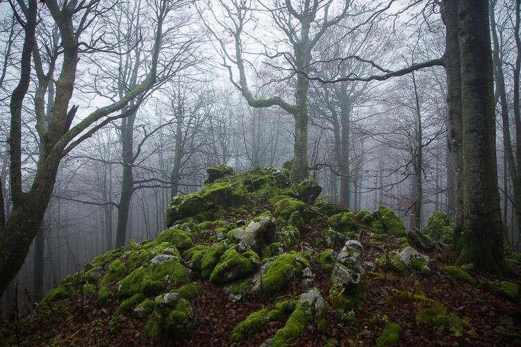 Bijele_stijene-38